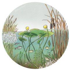 pond-nursery