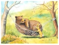 Bear Tries Out the Hammock (watercolor, colored pencil)