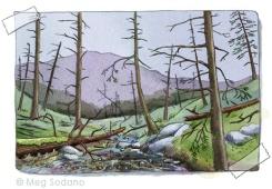 Dead Hemlock Forest (mixed media)