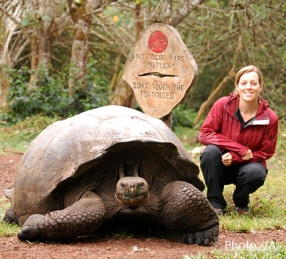 gps-tortoise3