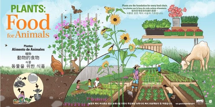 QBG-Farm-Compost-1